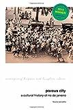 Porous City: A Cultural History of Rio de Janeiro (Contemporary Hispanic and Lusophone Cultures LUP)