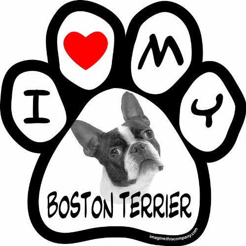 (Imagine This 5-1/2-Inch by 5-1/2-Inch Car Magnet Picture Paw, Boston Terrier)