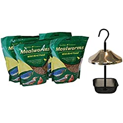 Wildlife Sciences Mealworm 4 Pack with Stainless Steel Feeder