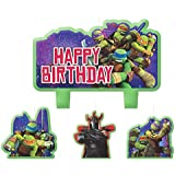"""Party Time Teenage Mutant Ninja Turtles Molded Mini Character Birthday Candle Set, Pack of 4, Green , 2.25"""" x 3.25"""" Wax"""