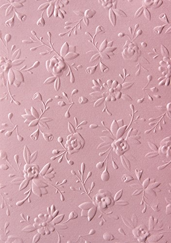 Sizzix 662765 3-D Textured Impressions Embossing Folder, Pink
