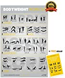 Alpine Fitness Bodyweight Exercise & Fitness Poster | Laminated Gym Planner for a Great Workout - Guide to Build Muscle & Strength