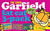 Garfield Fat Cat 3-Pack #10: Contains: Garfield Life in the Fat Lane (#28); Garfield Tons of Fun (#29); Garfi eld Bigger and Better (#30))