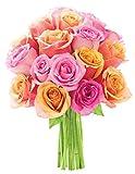 Kabloom Alice in Wonderland Orange and Pink Roses - Without Vase