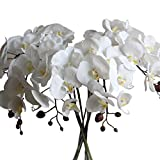 Calcifer 10 Pcs Artificial Real Touch Latex Phalaenopsis Orchid Stem Bouquets Artificial Flowers for Wedding Party Home Garden Decor (White&Yellow Heart)
