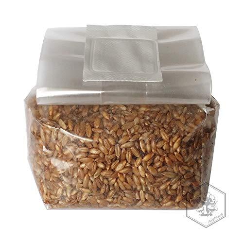 10 NEW Dupont Tyvek Patch Mushroom 5 inch Reusable Jar Filters Autoclave Safe