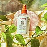 Thayers Alcohol-Free Cucumber Witch Hazel Facial