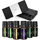 Anjou 6 Packs 10 ml Essential Oils Set, 100 Pure Top 6 Aromatherapy Oils Basic Sampler Gift Kit, (Lavender, Tea Tree, Eucalyptus, Lemongrass, Orange, Peppermint), Therapeutic grade
