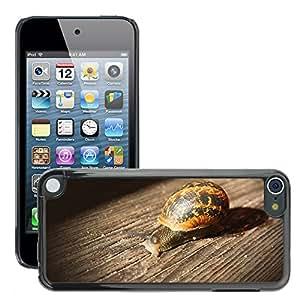 Etui Housse Coque de Protection Cover Rigide pour // M00110961 Caracol de madera Animal lenta // Apple ipod Touch 5 5G 5th