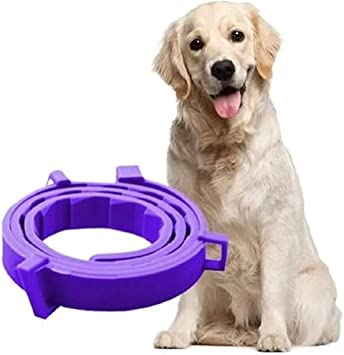Kptkp Dog And Cat Sedative Collar Adjustable Collar Small And Medium Sized Large Pets Reduce Anxiety Pheromone And Make Pets Last For Natural Calm 62cm Amazon Co Uk Pet Supplies