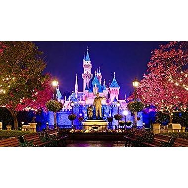 4 adult Tickets 2 Day Hopper Disneyland Anaheim Los Angeles.JUNE ONLY