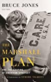 img - for The Marshall Plan and the Shaping of American Strategy book / textbook / text book