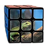 AVABAODAN Cute Chameleon Rubik's Cube 3D Printed 3x3x3 Magic Square Puzzles Game Portable Toys-Anti Stress For Anti-anxiety Adults Kids