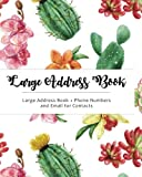 Large Address Book: Jumbo Size for Seniors : Big & Easy to write – Phone Numbers & Email & Contacts for Reference : Cactus Design (Volume 4)