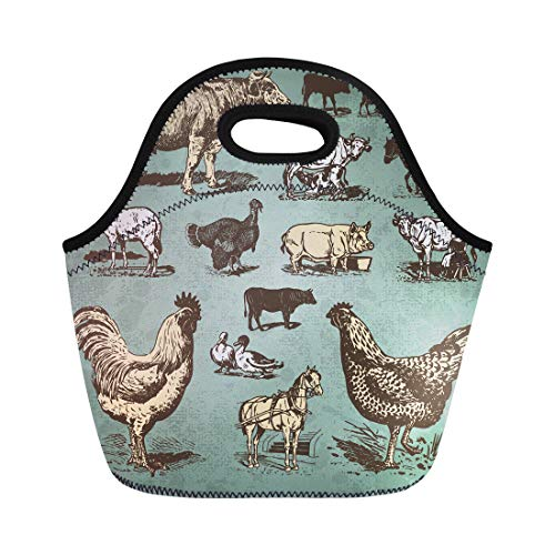 (Semtomn Neoprene Lunch Tote Bag Cow Vintage Farm Animals Drawings Livestock and Poultry Retro Reusable Cooler Bags Insulated Thermal Picnic Handbag for Travel,School,Outdoors,Work)