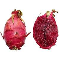 20 Semillas Hylocereus monacanthus -Pitahaya rojo- By Samenchilishop