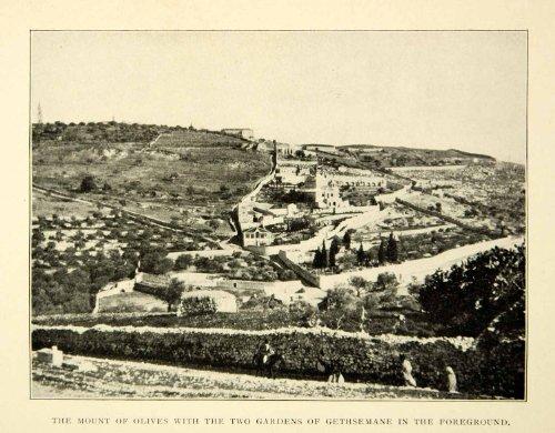 1903-print-mountain-olives-gardens-gethsemane-cityscape-religious-hillside-town-original-halftone-pr