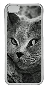 Shell Case for iphone 5C with British Shorthair Cat DIY Fashion PC Transparent Hard Skin Case for iphone 5C