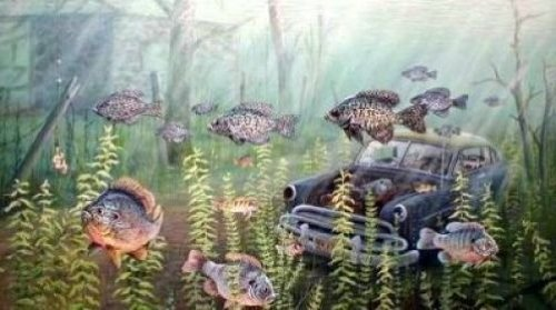Ken Zylla Signed/Numbered Limited Edition Print BEST FISHING BY A DAM - Signed Sunnies Print