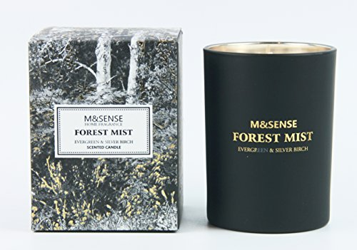 M&SENSE Evergreen Forest Fresh Pine Candle, Organic Soy Wax and Essential Oils, Burns Evenly and Cleanly, For Room Decor, Relaxation and Stress Reduction, Candle Gift for Men, 8.82 oz, black Evergreen Jar Candle