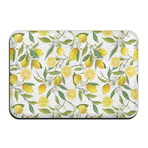 "BOLox Exotic Lemon Tree Welcome Door Mat Entrance Mat Floor Mat Rug Indoor/Outdoor/Front Door/Bathroom/Kitchen Mats Rubber Super Absorbent Non Slip 24""x16"",OneSize,White"