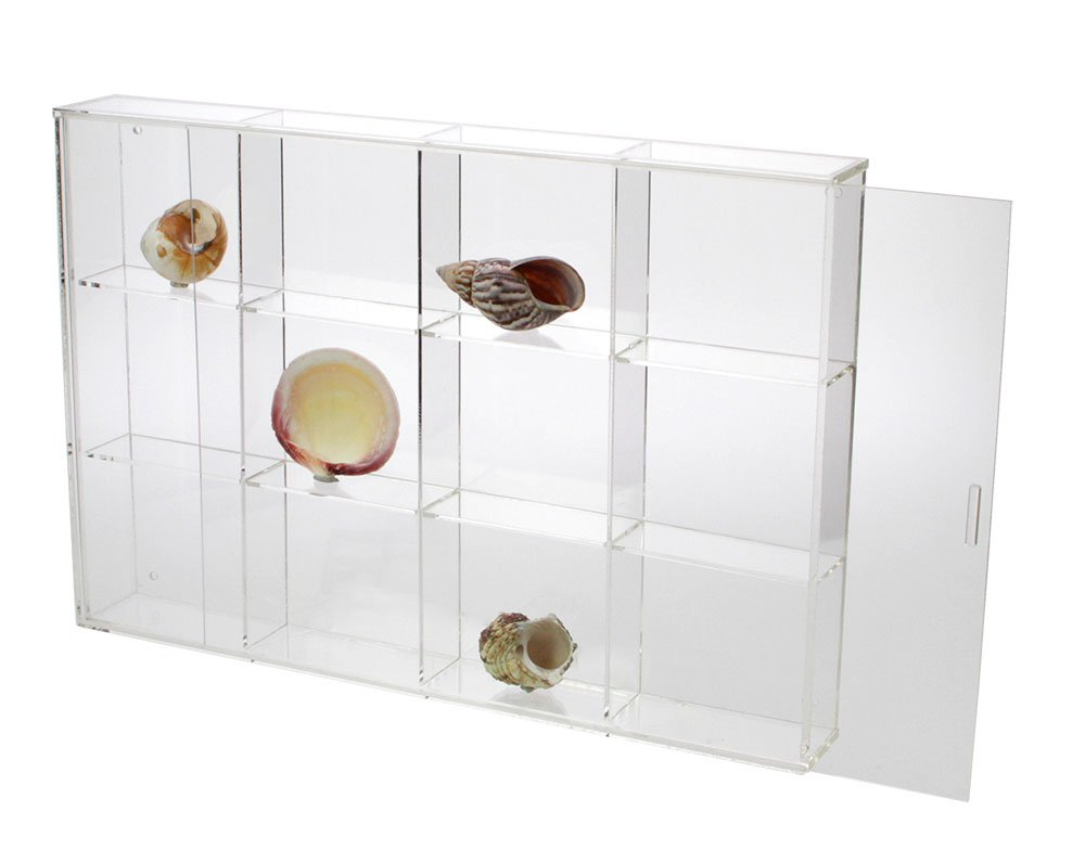 Seashell Display Case - Large 12 Compartments by SAFE