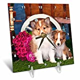 3dRose Dogs - Shetland Sheepdog Puppies Sitting by Small Wooden Wagon. - Desk Clock, 6 by 6-Inch (dc_209147_1)