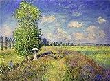 'The Summer, Poppy Field, 1875 By Claude Monet' Oil