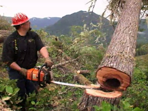 Ax Is Back - For Ax Men