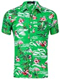 XI PENG Men's Tropical Short Sleeve Flamingo Hibiscus Christmas Beach Aloha Hawaiian Shirt (Pink Flamingo Hibiscus Green, Medium)