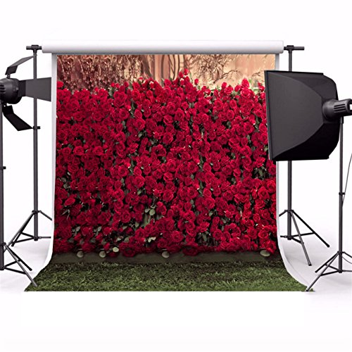 AOFOTO 8x8ft Backdrops Photography Background Romance Red Rose Flowers Wall Blurry Grass Floors Lovers Kid Toddler Girl Portrait Seamless Scene Photo Shoot Studio Props Video