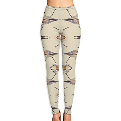 39916d37 Amazon.com : Xayeu Sand Pipers On Sand Colored Yoga Pants for Women ...