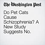 Do Pet Cats Cause Schizophrenia? A New Study Suggests No. | Karin Brulliard