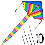 Kids Large Rainbow Delta Kite - One of the Best Outdoor Toys for Summer Beach Fun, Durable Easy Flyer Comes with Kite Reel Rods and Happy Family Time