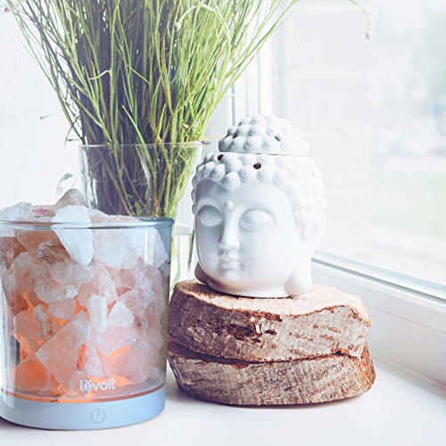 Pink Sea Salt Lamps : Levoit Cora Himalayan Salt Lamp Natural Glow Pink Sea Crystal - Import It All