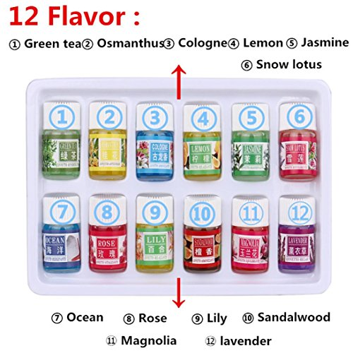 Inverlee N 6 Flavor 3ML/Box Pure Aromatherapy Diffuser Oils Set Essential Oil Skin Care Bath Massage Beauty (12PC)