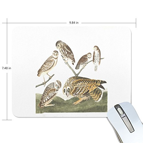WDYSECRET Plat Burrowing Owl Mouse Pad Thickening Non-Slip Rubber Abrasion Resistant Material