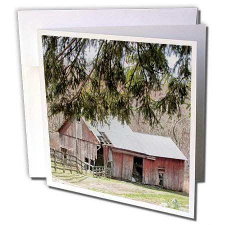 old red barn under the tree - Greeting Cards, 6 x 6 inches, set of 12 (gc_113795_2)