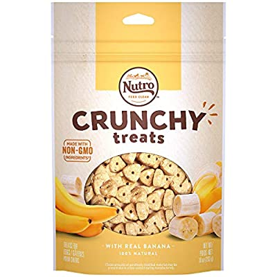 Nutro Crunchy Dog Treats with Real Mixed Berries