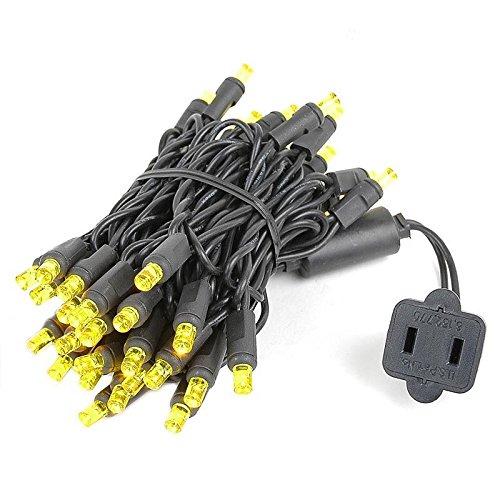 Novelty Lights 50 Light LED Christmas Mini Light Set, Outdoor Lighting Party Patio String Lights, Yellow, Black Wire, 11 Feet