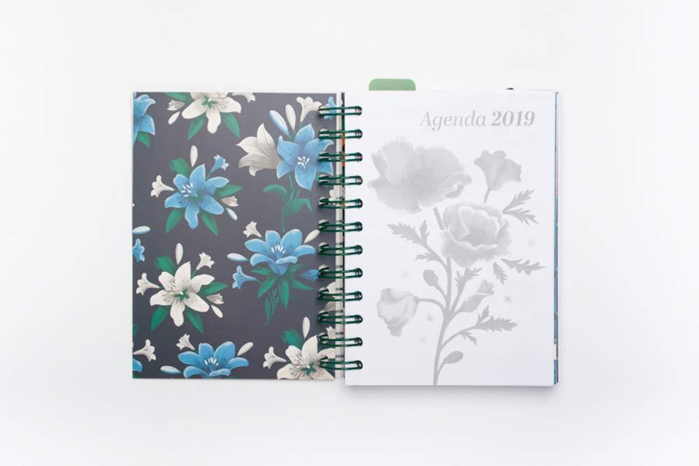 Grupo Erik Editores AGEDP1906 - Agenda anual 2019 con diseño Frida Kahlo, día pagina