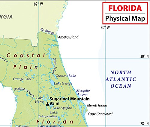 Physical Map Of Florida.Amazon Com Florida Physical Map 36 W X 30 26 H Office Products