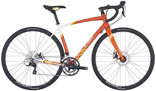 Raleigh Bikes Revere 2 Women's Endurance Road Bike