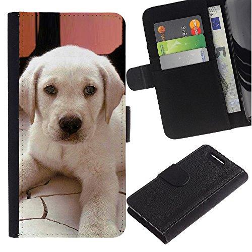 LASTONE PHONE CASE / Lujo Billetera de Cuero Caso del tirón Titular de la tarjeta Flip Carcasa Funda para Sony Xperia Z1 Compact D5503 / Labrador Small Puppy Dog Canine