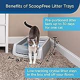 PetSafe ScoopFree Automatic Self-Cleaning Cat