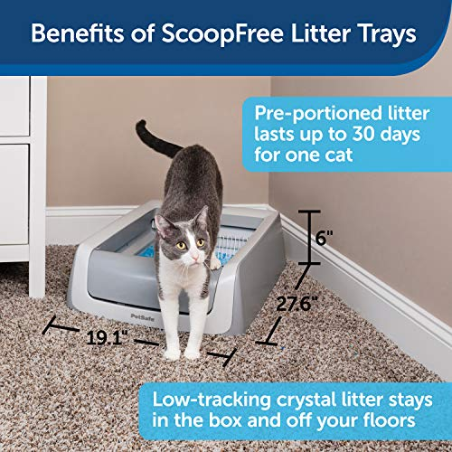 PetSafe ScoopFree Automatic Self-Cleaning Cat Litter Box – Original Purple or Taupe – 2nd Generation – Includes…