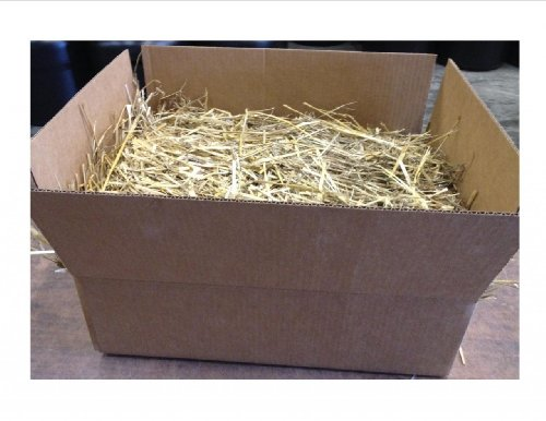kitty-tube-wheat-straw-4-pounds