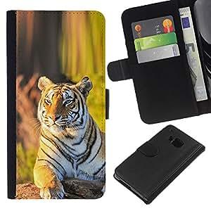 All Phone Most Case / Oferta Especial Cáscara Funda de cuero Monedero Cubierta de proteccion Caso / Wallet Case for HTC One M7 // tigr zver vzglyad zelen