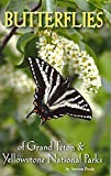 img - for Butterflies of Grand Teton & Yellowstone National Parks book / textbook / text book
