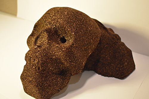 Great Features Of The Original Campfire Skull - 2Pack